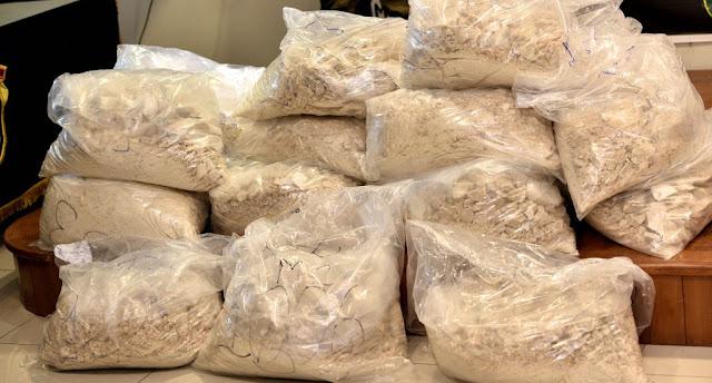Incautan 491 kilos cocaína valorada en US$12 millones y apresan un dominicano en PR