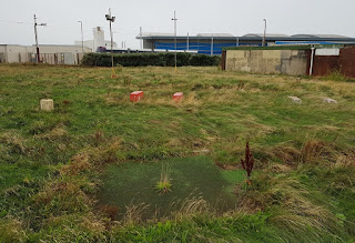 Abandoned Crazy Golf course at Starr Gate in Blackpool