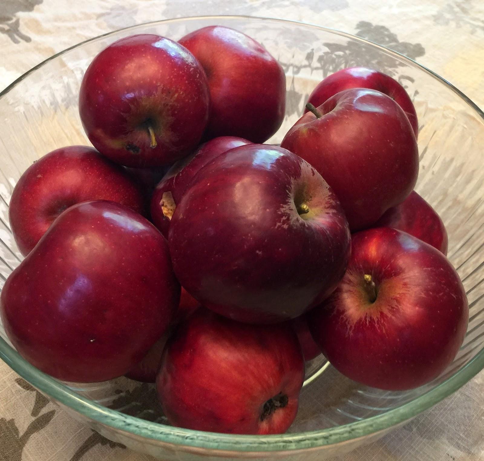 картинки сорта яблок джонатан трети
