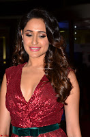 Pragya Jaiswal stunning Smiling Beauty in Deep neck sleeveless Maroon Gown at 64th Jio Filmfare Awards South 2017 ~  Exclusive 009.JPG