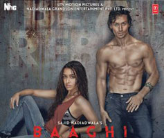 Baaghi Hindi Movie Poster
