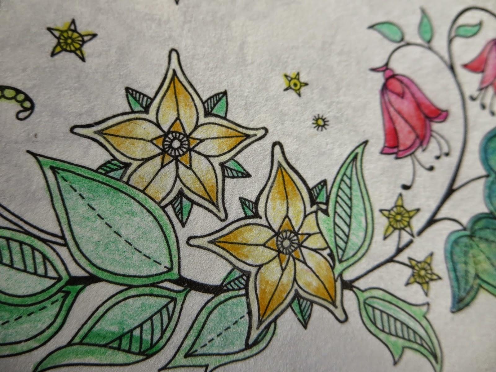 My Secret Garden: Passion For Pencils: My Secret Garden Colouring Book, Part 1