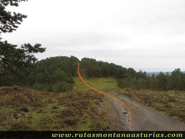 Camino al Fonteblanca