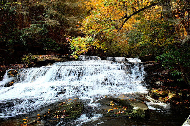 Tennessee Waterfalls, Travel, Explore, Hiking, Fall Leaves, nature