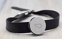 photo of the whistle device that monirtors the activity of your pets