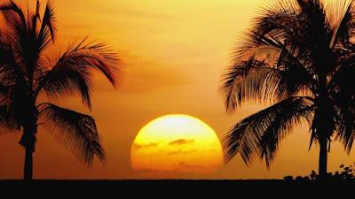 Manfaat Matahari
