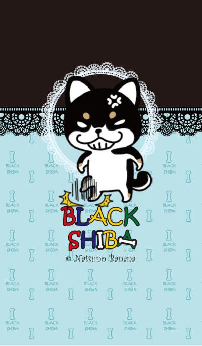 Negative black Shiba Ice Blue
