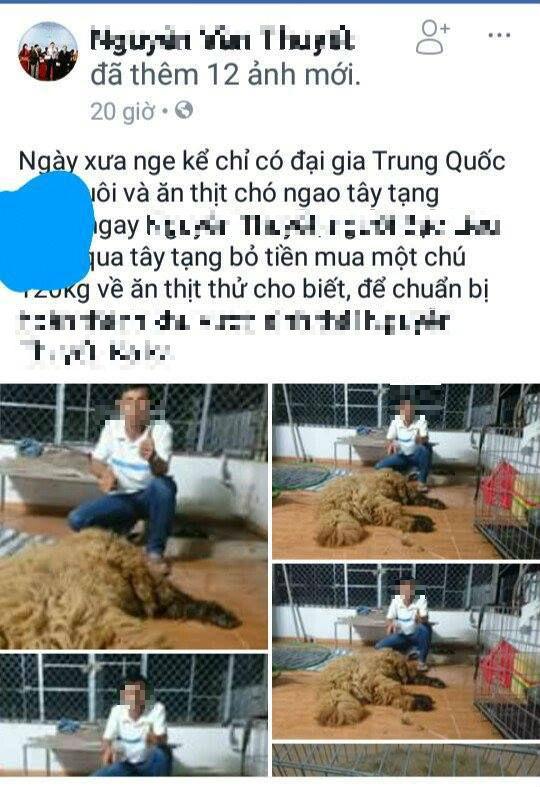 Lời chia sẻ của người chủ nhân đoạn clip mổ thịt chó Ngao Tây Tạng
