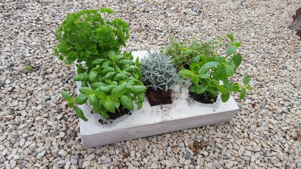 How to make a cement planter