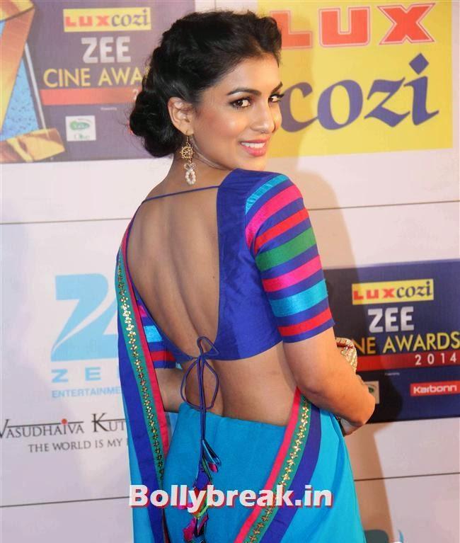 , Zee Cine Awards 2014 Red Carpet Pics