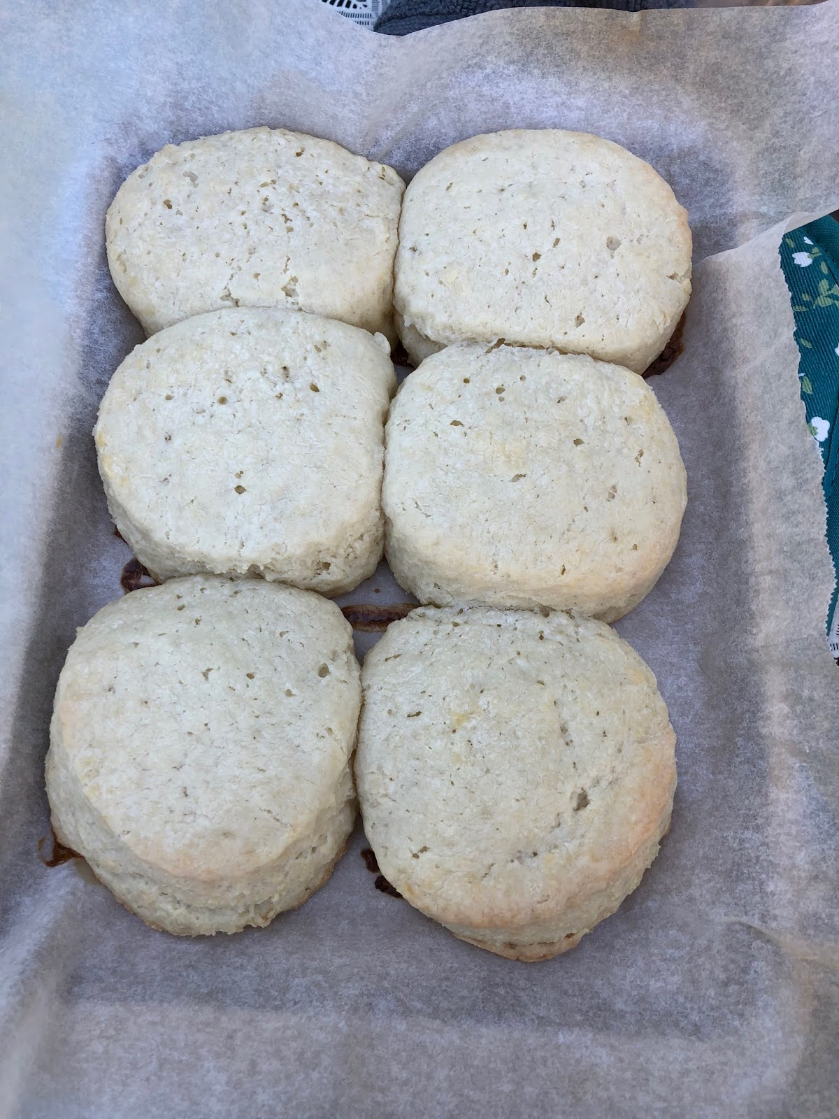 Nathalie Dupree's Two Ingredient Biscuits