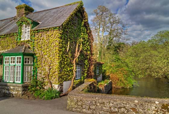 Eu quero uma casa no campo...♩♪♫ Onde eu possa plantar meu amigos, meus discos, meus livros e nada mais!♩♪♫♬♭
