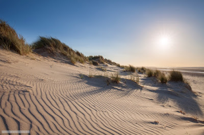 Ripples in the sand - Holkham
