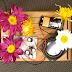 [News] Oficina ¨Amplificador Etnobotânico¨ ensina a tirar som das flores aos residentes do Transmedia Lab