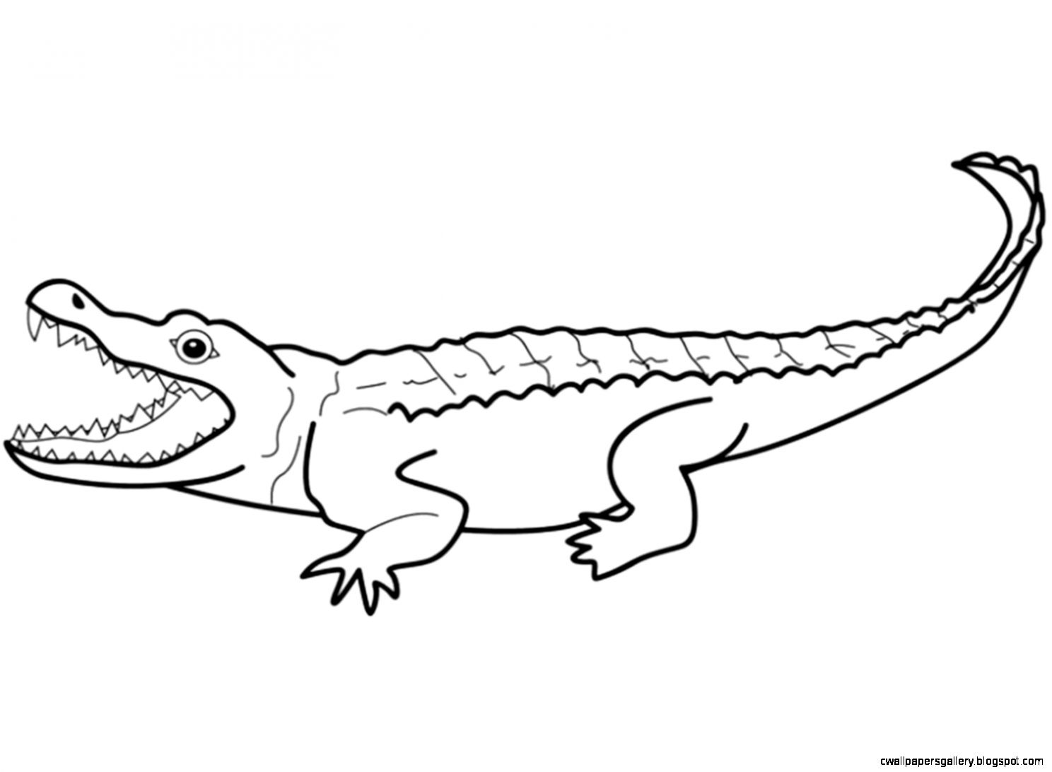 amphibian coloring pages | Amphibians And Reptiles | Wallpapers Gallery
