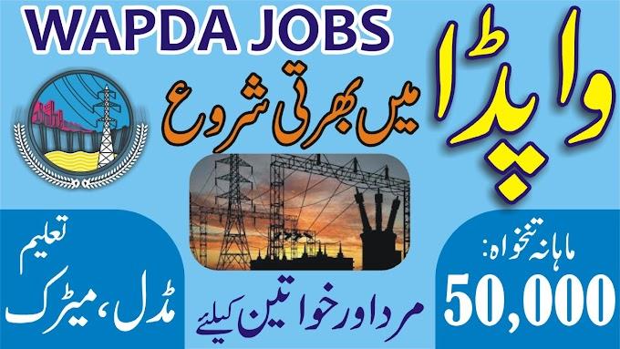 Jobs in WAPDA 2021 Download Application Form