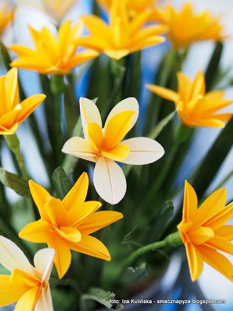 kwiatki z papieru, origami, warsztaty, rekodzielo, prace reczne, kolorowe kwiaty, ozdoby z papieru, papier, wiosna
