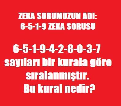 6 5 1 9 Zeka Sorusu