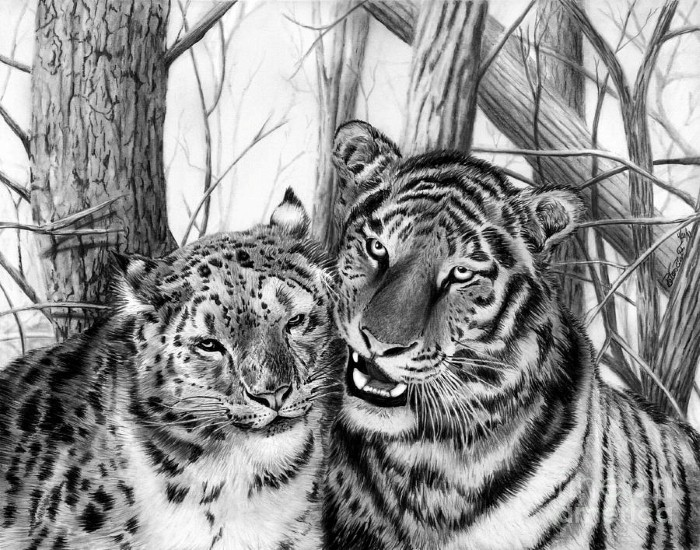 Рисунки карандашом. Peter Piatt 21