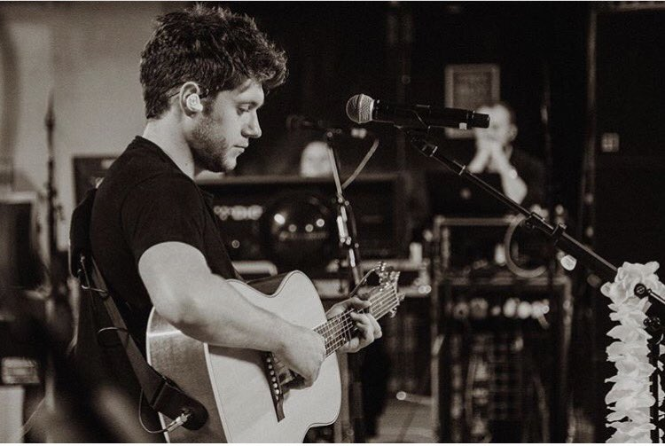 Niall Horan - Flicker torrent