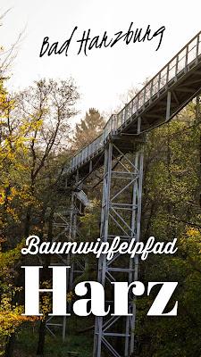 Luchstour Bad Harzburg | Premiumwanderung Harz