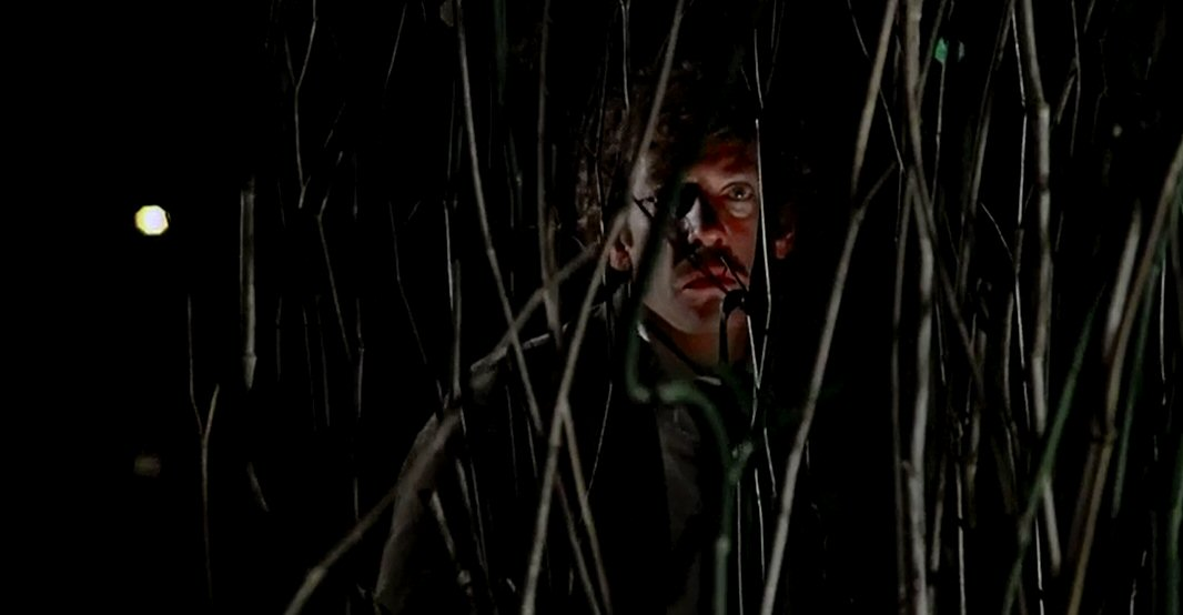 Just Screenshots: Invasion Of The Body Snatchers (1978