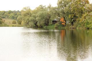 путешествие, ясная поляна, прогулки по Туле, Лев Толстой, осенние прогулки, желтые листья, красивые виды, природа, золотая осень, дом музей Ясная Поляна