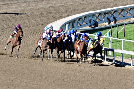 Santa Anita racetrack by Lady by Choice