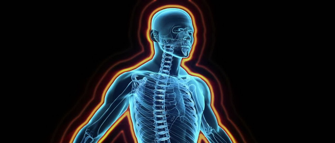 Fisiología (VII): el sistema inmune - Biología