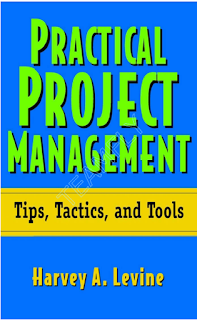 Practical Project Management - Tips, Tactics and Tools PDF-ebook Fast Shipping