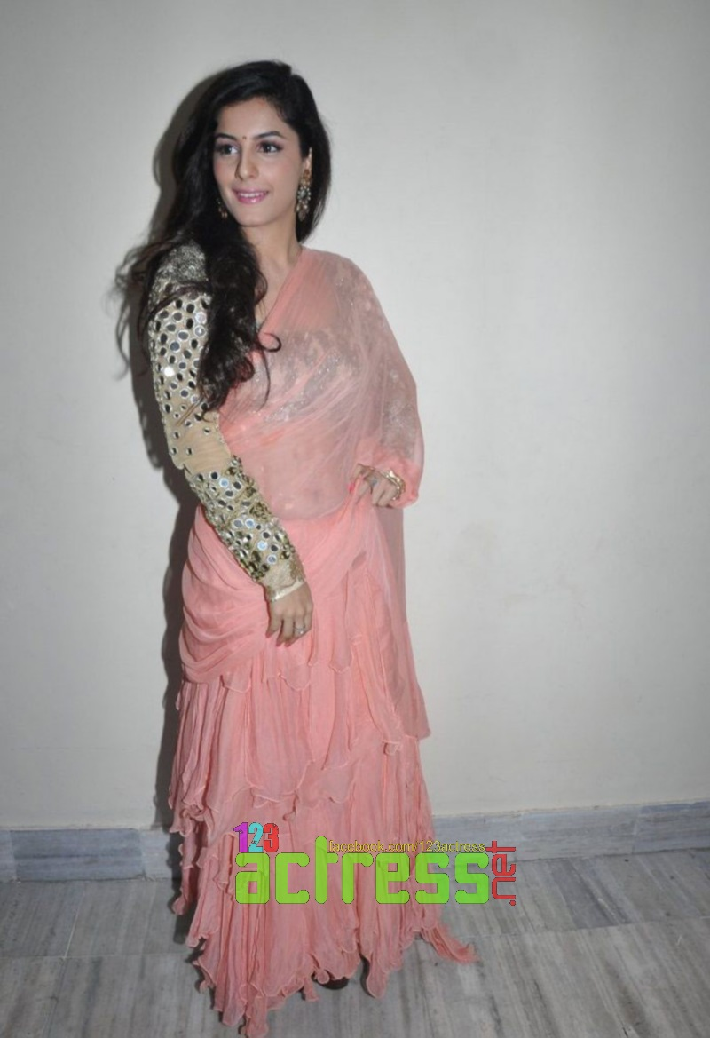 kiran rathod rose saree