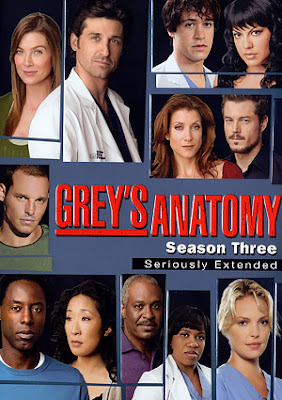 Grey's Anatomy Temporada 3 DVDRip Dual Latino/Ingles