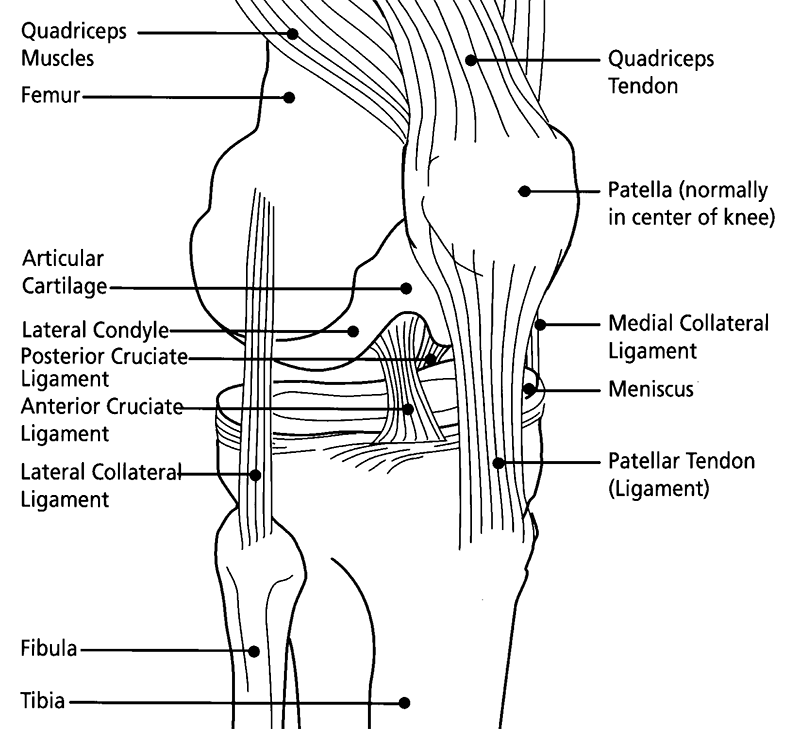 Cog Blog: Knee Pain from Cycling