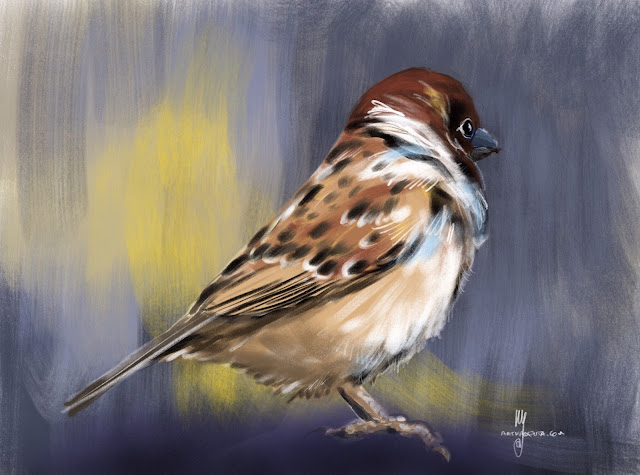 House Sparrow bird painting by Artmagenta
