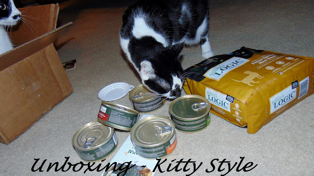 Unboxing Nature's Logic food kitty style