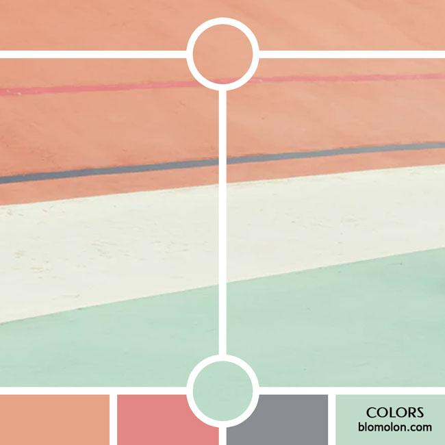 variedad_en_color_color_29