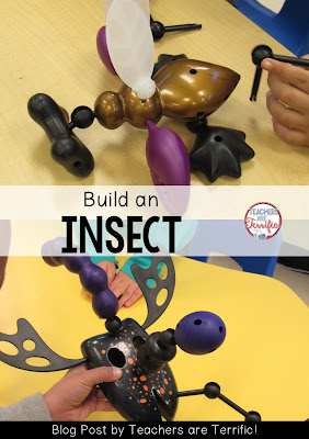 STEM Challenge: Build an insect using Exo-Bones! Check this blog post for more ideas!