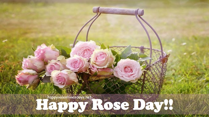 🎕 Happy Rose Day 2020 Wishes Images Pics 💞 Quotes Messages Wallpapers Download in HD