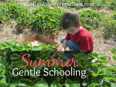 Summer Gentle Schooling 2015 {The Unlikely Homeschool}