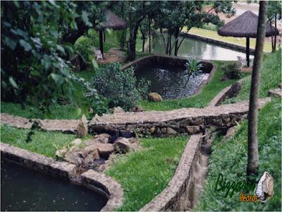 Construção de lago com os muros de pedra, caminhos de pedra no bosque com o quiosque de piaçava e a canaleta de concreto para captar a água da chuva e não entrar no lago para não sujar a água. Construção de lagos em Mairiporã-SP.