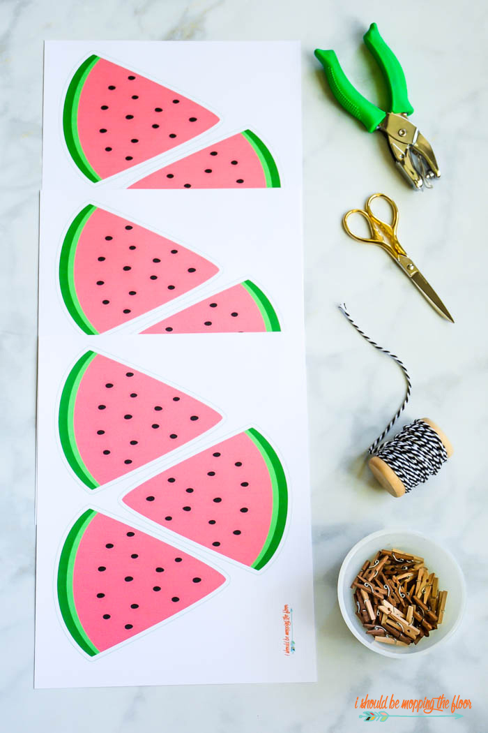 Cute Watermelon Banner