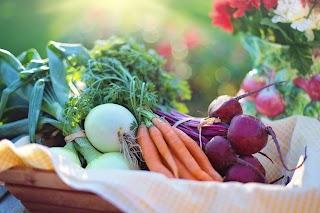 4 Alasan Mengapa Berkebun itu Bagus Untuk Kesehatan?
