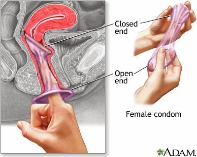 vagina Inserting into