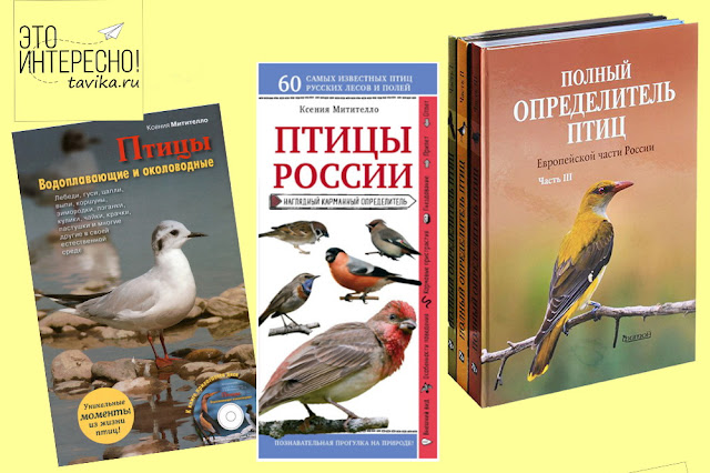 книги о птицах нон-фикшн