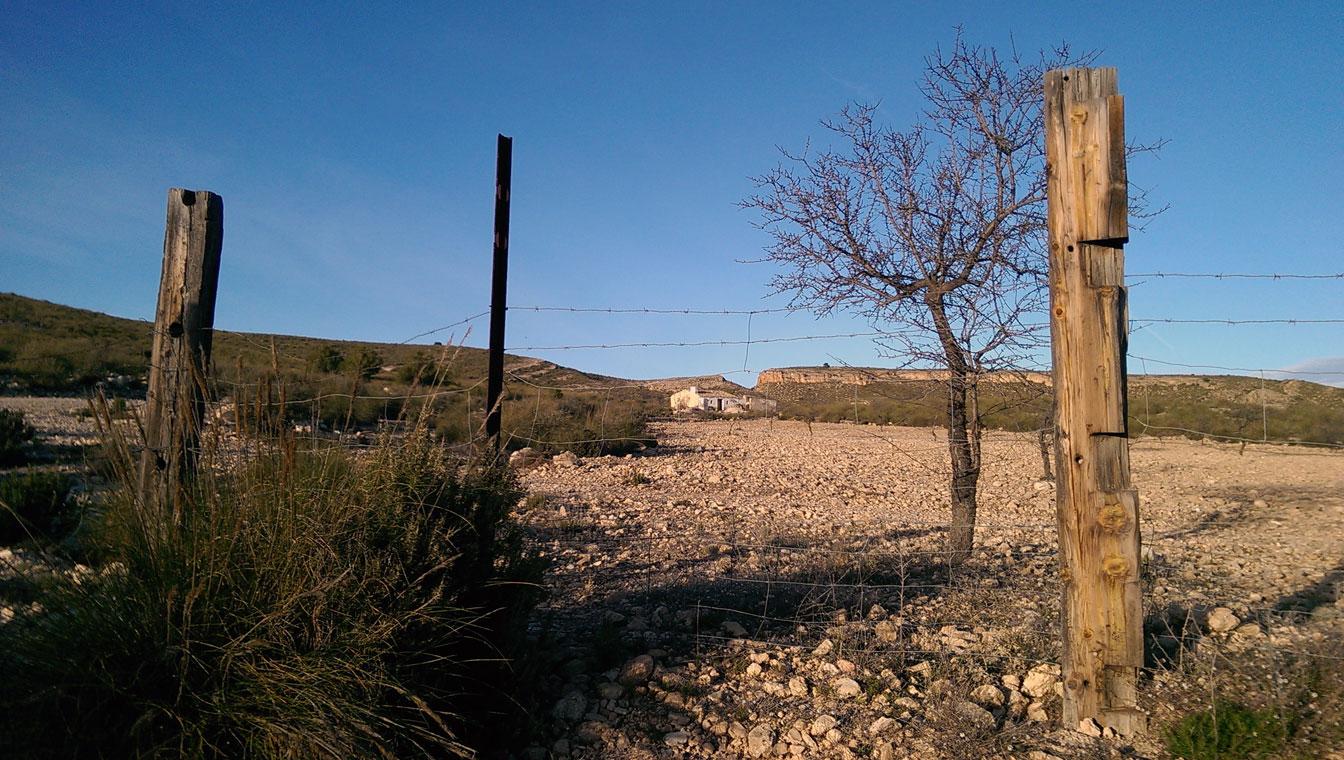 paraje de las Moratillas, Yecla