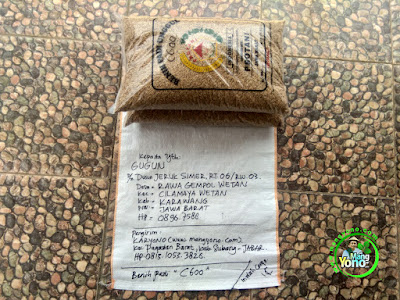 Benih Padi Pesanan    GUGUN Karawang, Jabar    Benih Sebelum di Packing.