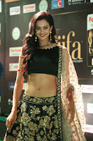 Shu Aiyappa Spicy Black CHoli Low Rise Ghagra ~  Exclusive 18.JPG