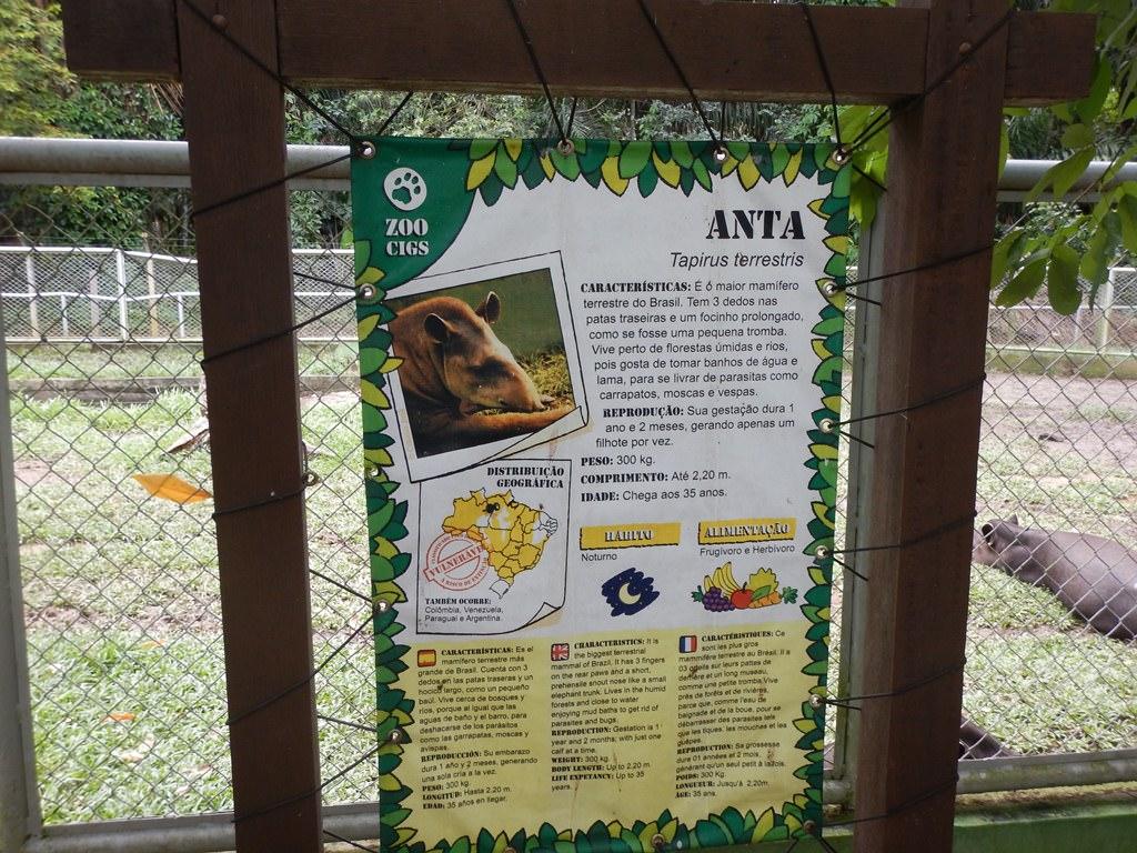 Zoológico do CIGS Manaus