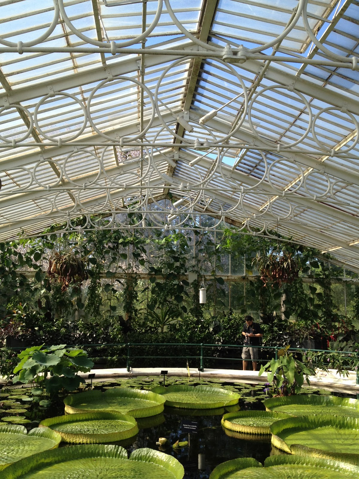 Mug Mike S Urban Garden Kew Botanical Garden London