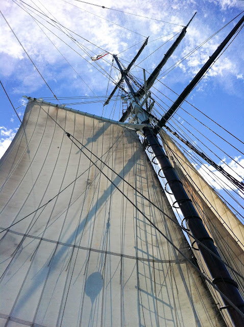 the sail of the californian tall ship